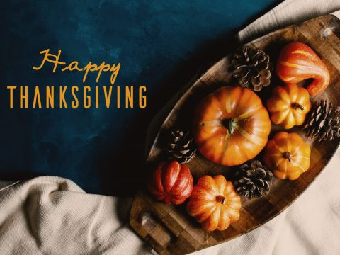 Happy Thanksgiving from the Staff of ACPA